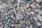 Разборка geely emgrand ec7